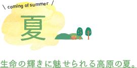 coming of summer 夏 生命の輝きに魅せられる高原の夏。