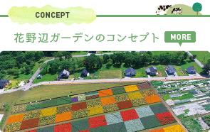 CONCEPT 花野辺ガーデンのコンセプト MORE