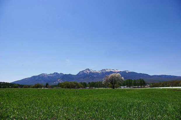5月下旬の八ヶ岳とこなし