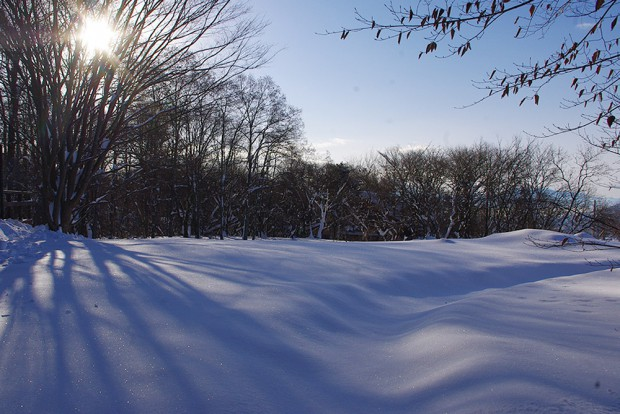 140209_大雪2